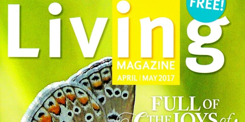 Living Magazine - Featuring Artisan Central